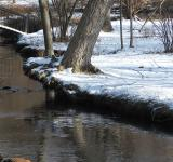 Free Photo - Winter Creek