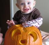 Free Photo - Pumpkin carving