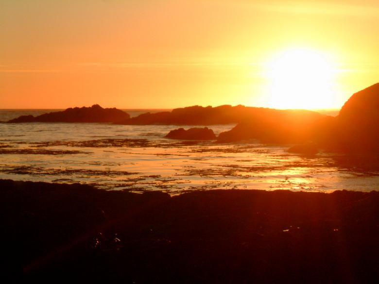 Free Stock Photo of Tofino, British columbia, Canada Created by Angela