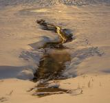 Free Photo - Water stream in the snow