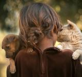 Free Photo - Little girl and puppies