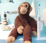 Free Photo - Stuffed monkey
