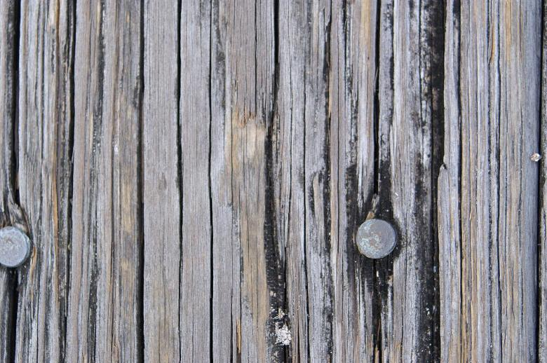 Texture - Wood Free Photo