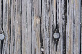 Download Texture - Wood Free Photo