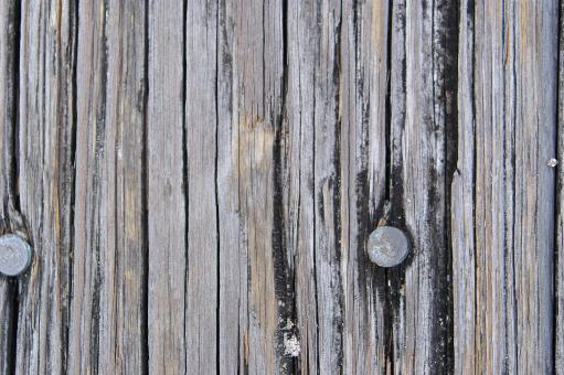 Texture - Wood - Free Stock Photo