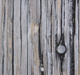 Free Photo - Texture - Wood