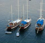 Free Photo - Yachts