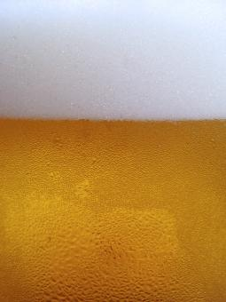Beer Frost - Free Stock Photo