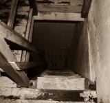 Free Photo - Steep wooden steps