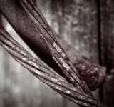 Free Photo - Rusted steel wire