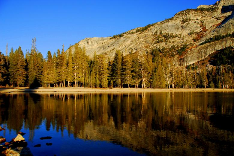Free Stock Photo of Yosemite National Park Created by Ajith
