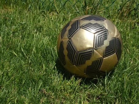 Soccer Ball - Free Stock Photo