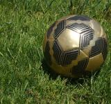 Free Photo - Soccer Ball