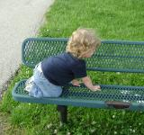Free Photo - Conquering the Bench