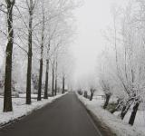Free Photo - Cold Way
