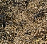 Free Photo - Ground Dirt