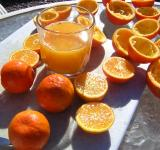 Free Photo - Fresh squeezed orange juice
