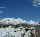 Free Photo - Arizona snow
