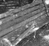 Black & White Bench - Free Stock Photo