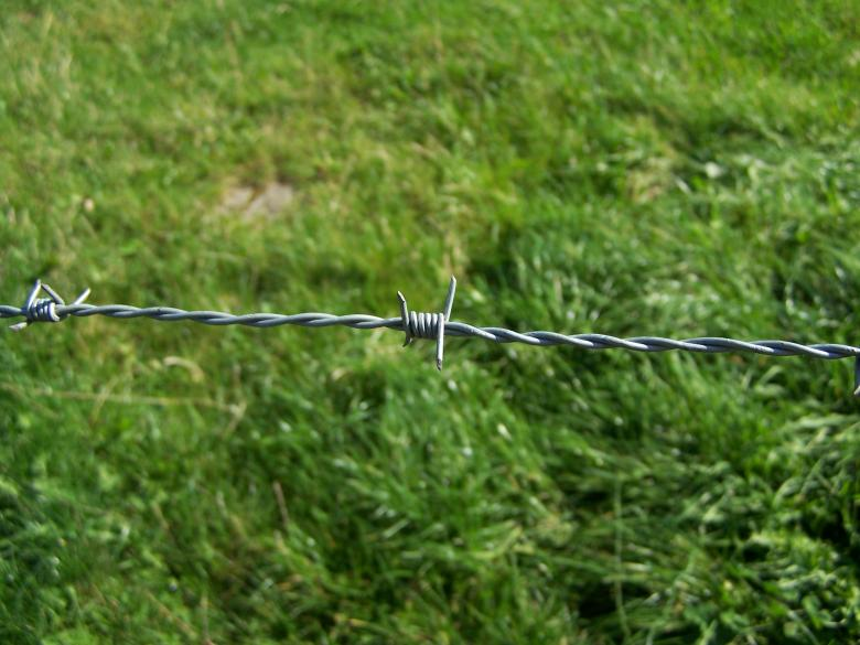 Free Stock Photo of Barbed wire Created by Marc