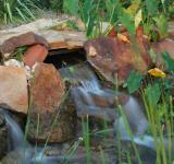 Free Photo - Garden Waterfalls