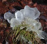 Free Photo - Ice on the Bluff