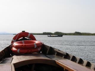 Boat Tour in Valencia - Albufera Free Photo