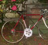 Free Photo - Morrison 10 Speed Bike