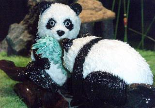 Download Coral Panda Statue behind glass Free Photo