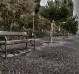 Free Photo - The bench