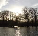 Free Photo - Winter At Hillsborough Park