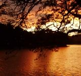 Free Photo - Darknes of the Kandy Lake