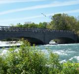 Free Photo - Beauty of Niagara River