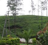 Free Photo - Upcountry Scene in Sri laka