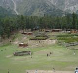 Free Photo - Fairy meadows
