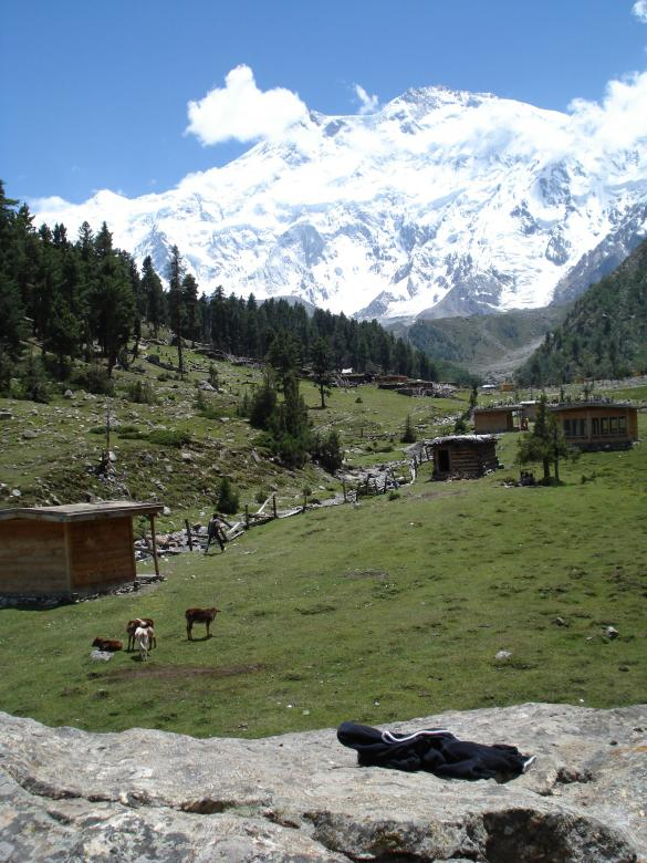 Free Stock Photo of Fairy Meadows Created by Ali Haider