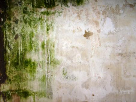 This is art - Dirty wall - Free Stock Photo