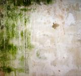 Free Photo - This is art - Dirty wall