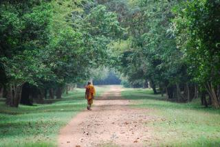 A walking monk Free Photo