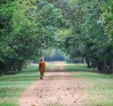 Free Photo - A walking monk