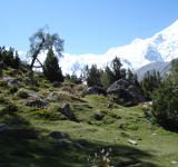 Free Photo - Nanga parbat