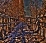 Free Photo - Wooden walkway