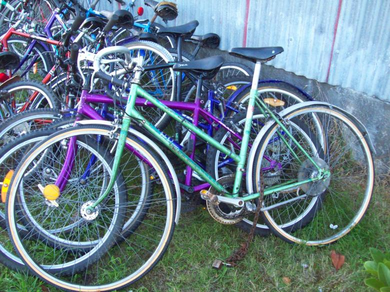 Free Stock Photo of Healing bike - green ladies Created by Peter Alexander Robb