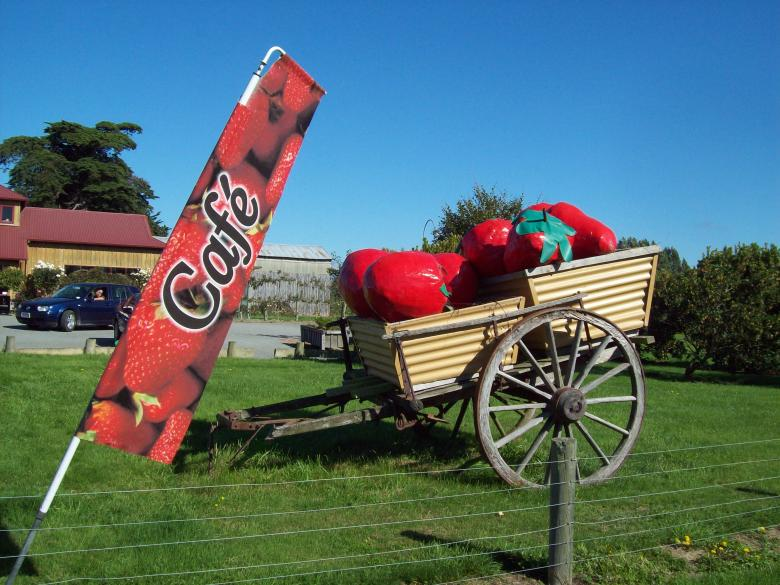 Free Stock Photo of Butlers Berry Farm sugn and cart - Scene Created by Peter Alexander Robb
