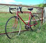 Free Photo - Red bike and Iron gate - Healing ten Spe