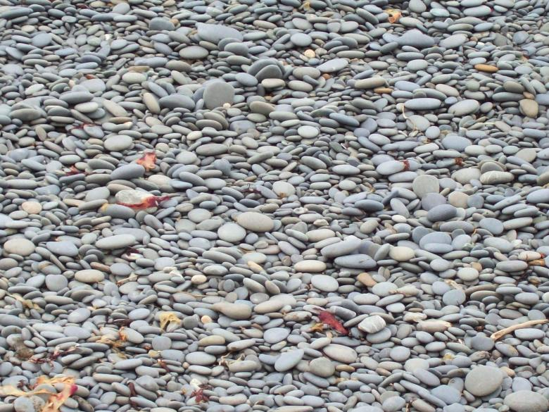 Free Stock Photo of Granite pebbles - beached and sorted Created by Peter Alexander Robb