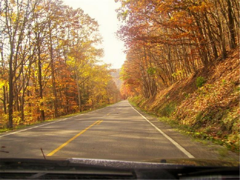 Free Stock Photo of God Bless Two Lane Roads and Fall Foilag Created by Marcy