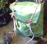 Free Photo - Rucksack - Backpack und Spangle Game Hen