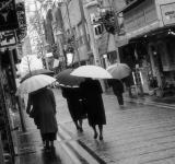 Free Photo - Walking in the rain