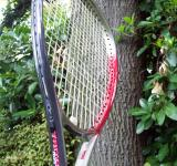 Free Photo - Tennis the game